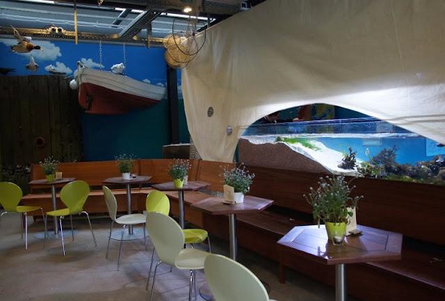 Mehr übers Meer lernen: Das Ostsee Info-Center in Eckernförde (+ Verlosung). Ein tolles Ausflugsziel für Familien auch bei Schlechtwetter!