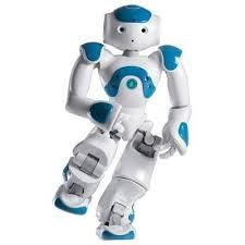 Humanoid Robot Kits for Adults