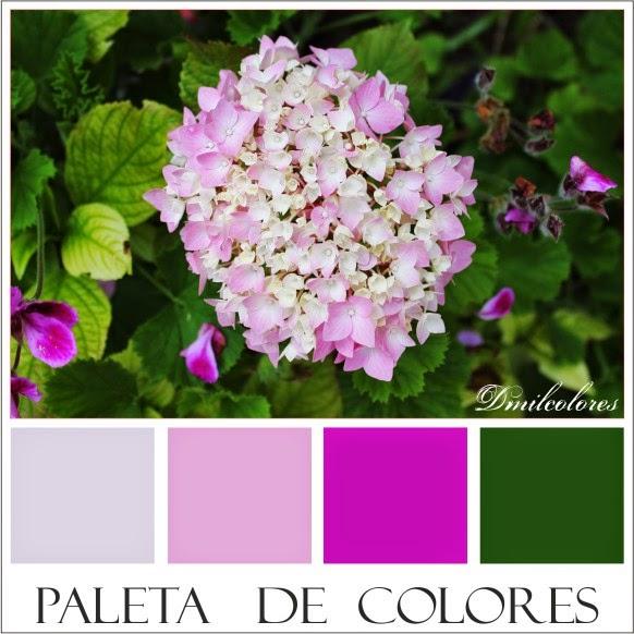 colores dmilcolores