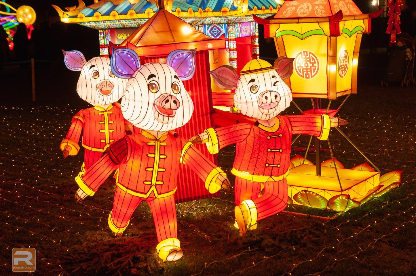 Lielās Ķīnas laternas: Visuma zīmes - 50