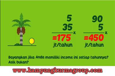 investasi-properti-kebun-kurma-di-kampoeng-kurma