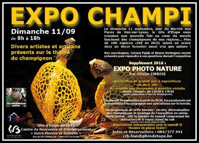 Exposition Champignons 2016 Han-sur-Lesse Belgique