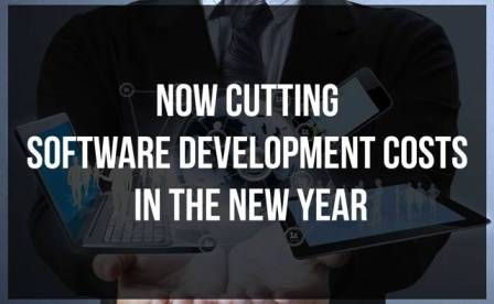 Cutting Software Development Costs in the New Year : eAskme