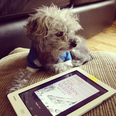 Murchie lies on a brown pillow. He wears a blue hoodie with white trim and has one paw stretched out before him. In front of him is a white Kobo with the cover of Fairy Tales for Modern Queers on its screen. The cover features a clear glass slipper and assorted clear jewels against a white background.