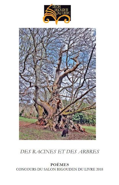 Des racines et des arbres