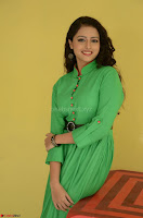 Geethanjali in Green Dress at Mixture Potlam Movie Pressmeet March 2017 020.JPG