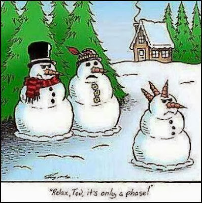 Funny teenage punk snowman cartoon - Relax, Ted, it's only a phase!