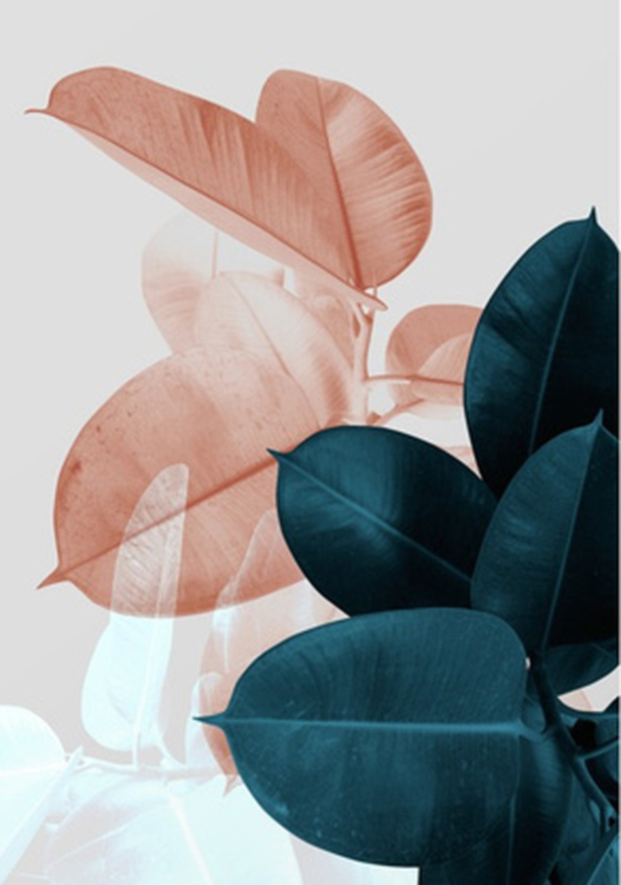 """""""moody leaves"""" by PrintsProject on Society 6"""