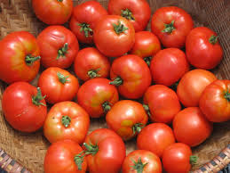 5 unknown but good substitutes for Tomatoes and Recipes