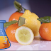 Learn How To Make Your Own 100% Natural Vitamin C Supplement At Home
