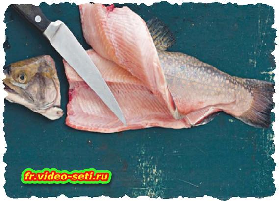 Le blues des poissons d'eau douce