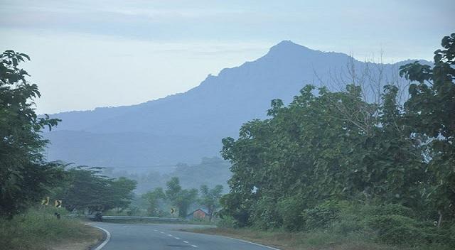 arang susang atau Jarang Pusang merupaka sebuah gunung yang memiliki ketinggian kurang lebih 1.200 meter dari permukaan laut. Kawasan yang memiliki kemiringan yang lumayan ektrem.
