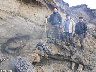 encuentran-mamut
