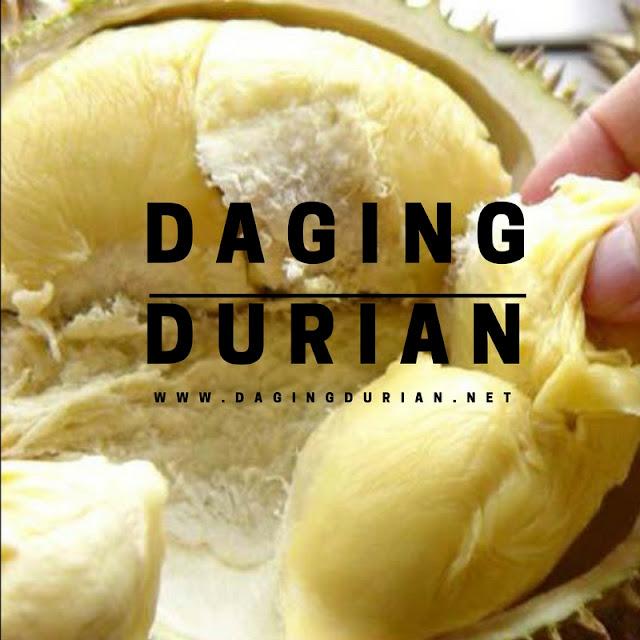 jual-daging-durian-medan-yang-tiada-duanya-di-subang