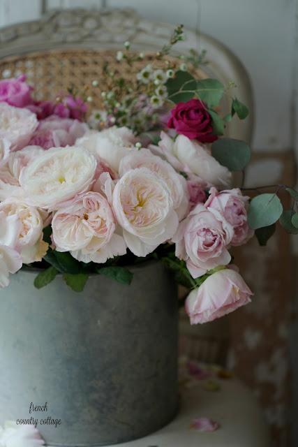 David Austin garden roses in zinc bucket on french chair