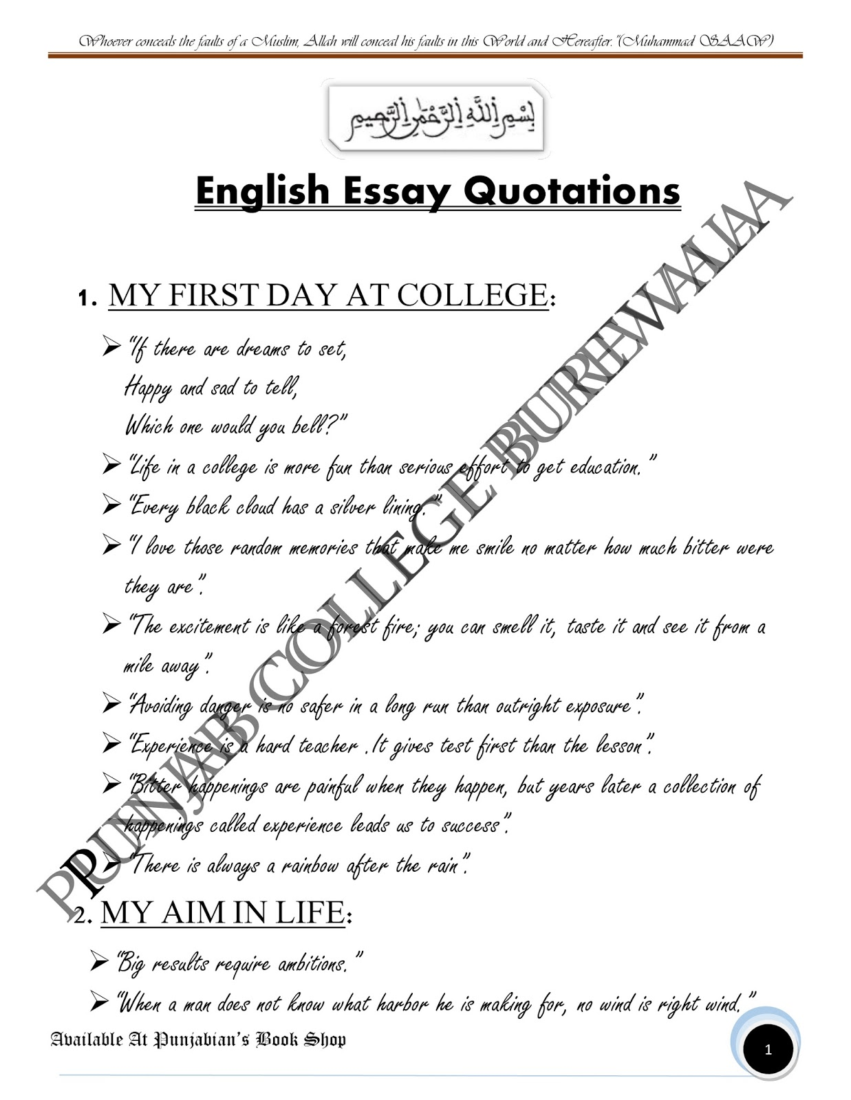 essay on college experience