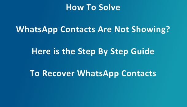 whatsapp contacts not showing