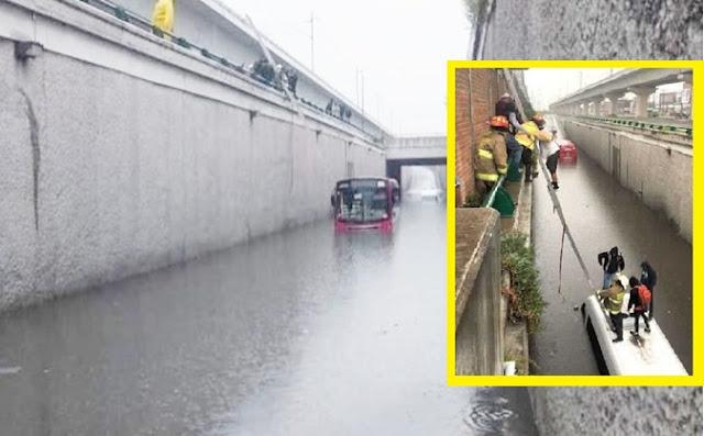 inundación, aguacero, sombrillas,