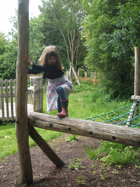 having fun climbing on the wooden play equipment at windmill hill city farm