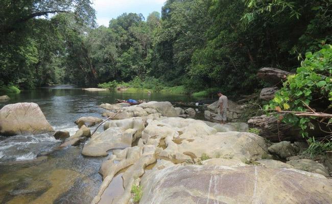 Xvlor.com Bukit Baka Bukit Raya National Park is the heart of Borneo