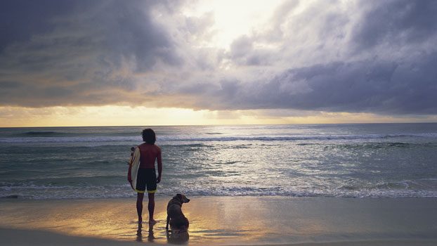 Surfer and dog Tallow Beach Byron Bay NSW