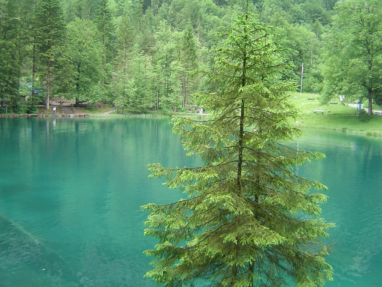 Travel Blausee Blue Lake Switzerland