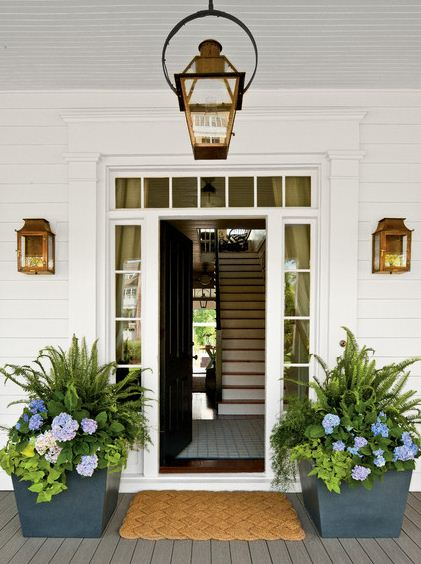 blue flower container gardening front porch entrance plants