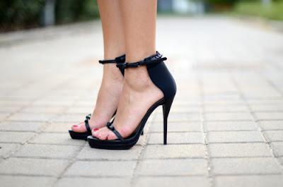 coleccion de Zapatos Elegantes