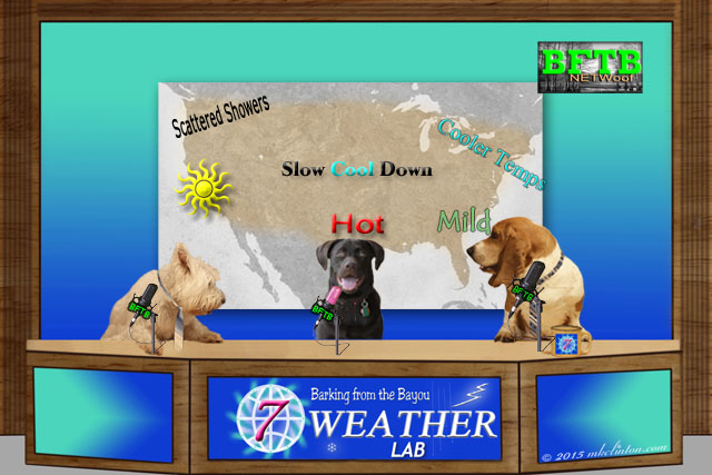 BFTB NETWoof weather desk with map of U.S.A. behind the three dogs.