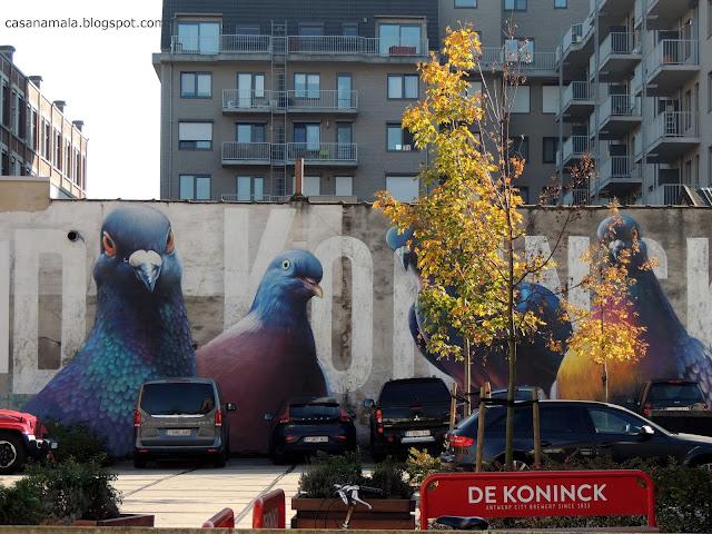 Estacionamento Visita Interativa De Koninck