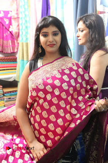Silk India Expo Launch Stills  0015.JPG