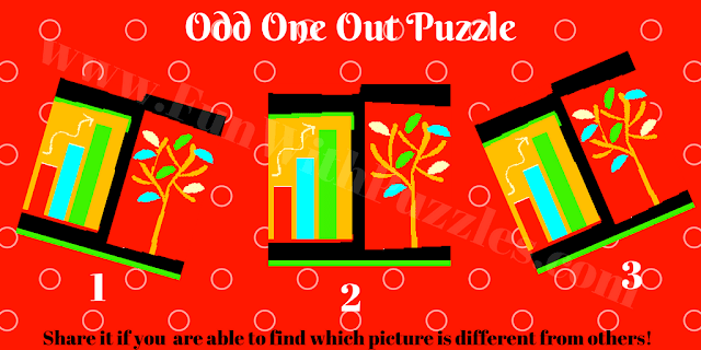 Picture Brain Teaser to find which picture is different?