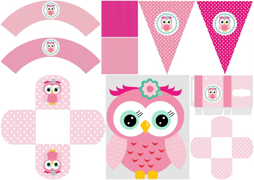 Pink Owl Sweet 16: Free Printable Boxes and Free Party ...