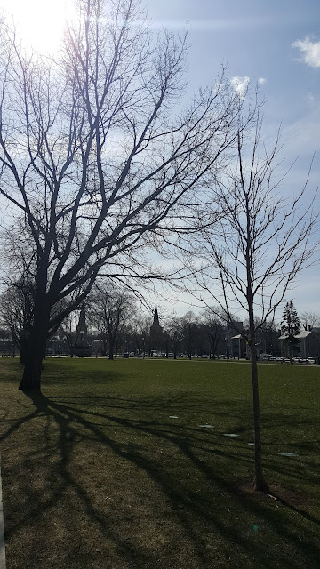 cambridge-common