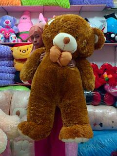 jual boneka teddy besar
