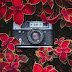 Mes 5 astuces concrètes pour avoir un feed Instagram harmonieux