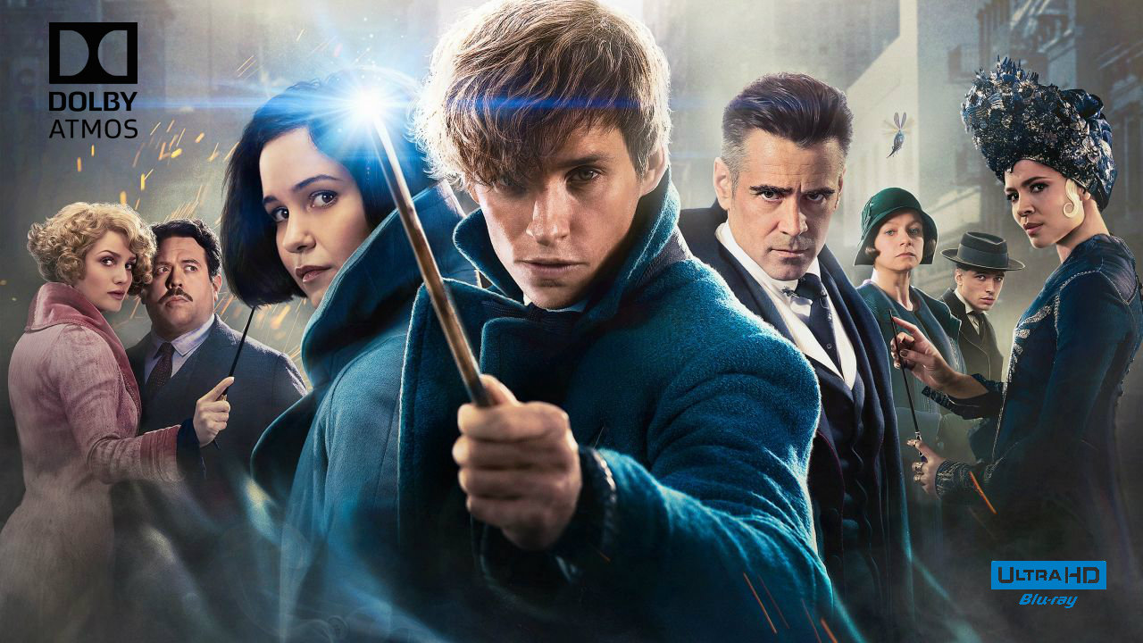 Fantastic Beasts and Where to Find Them 4K (2016) 4K Ultra HD Blu-ray