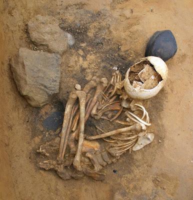 Esqueleto de una antigua necrópolis, con el cráneo roto, en posición semifetal encorvada.