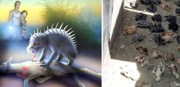 Στο Μεξικό το μυστηριώδες αρπακτικό chupacabra ξανά εμφανίστηκε και σκότωσε πάνω από 70 ζώα
