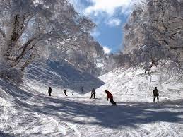 流葉スキー場