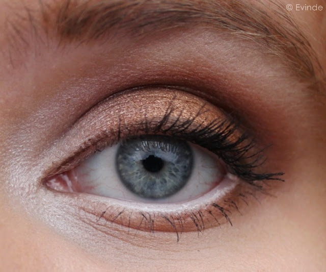 coastal scents hot pots eye look