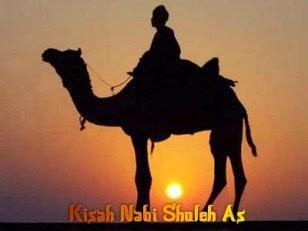 KISAH NABI SHALIH AS