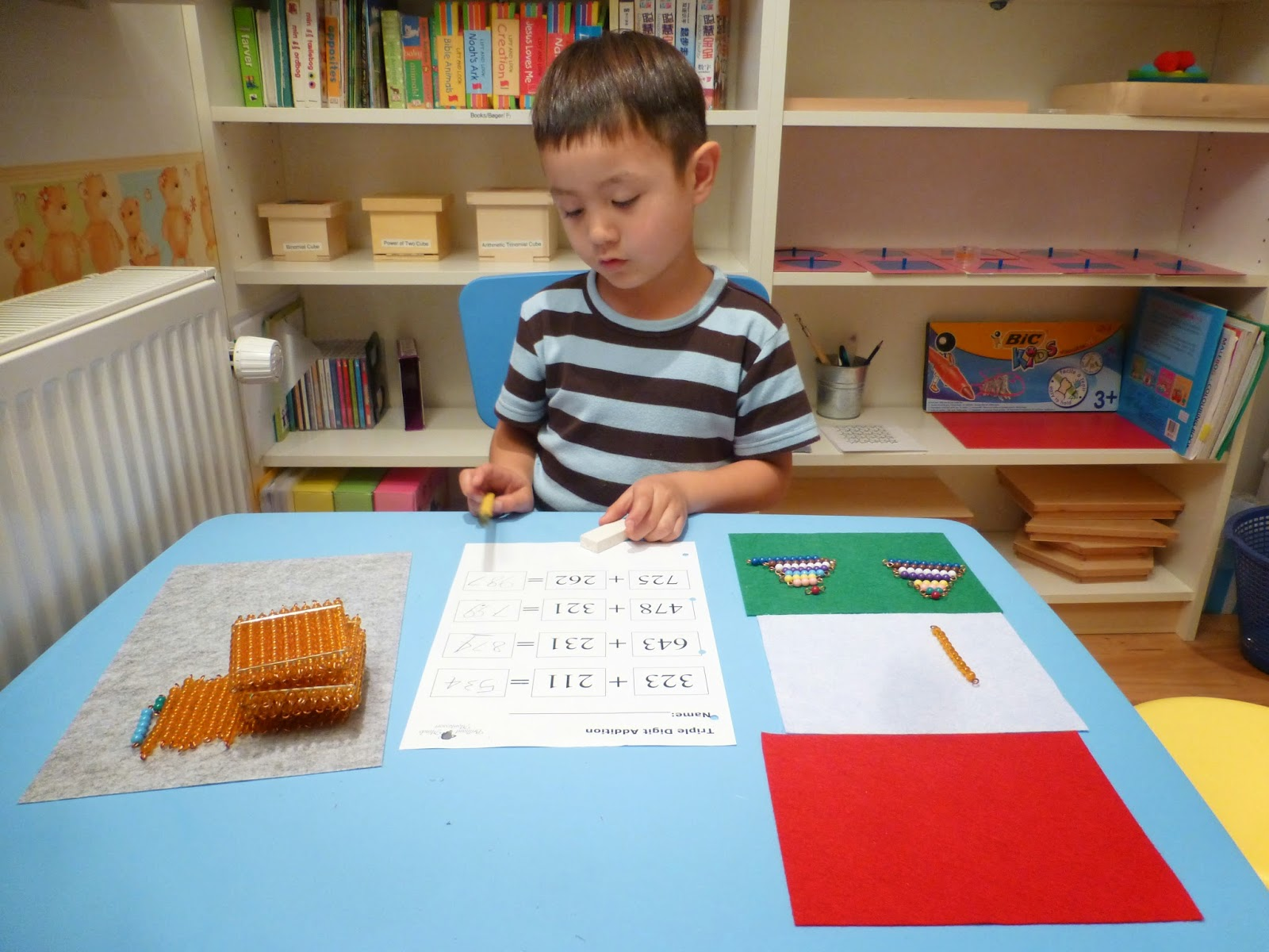 Family Fecs Montessori Activity Static Addition With