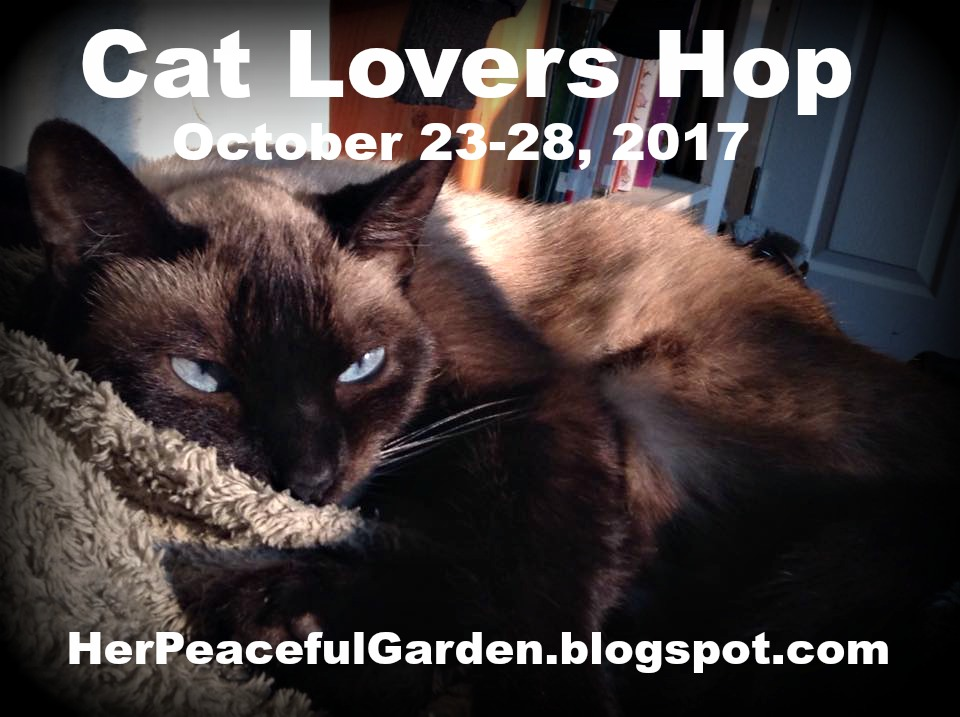 CAT LOVERS' BLOG HOP 2017