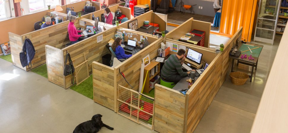Take your Dog to Work Day - June 23 | Australian Dog Lover