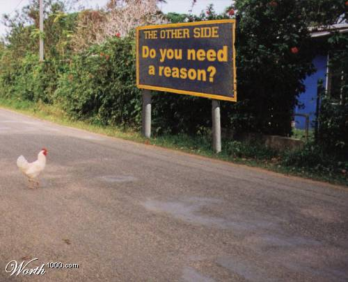 Anti Joke Chicken Sally: So, Why DID The Chicken Cross The Road?