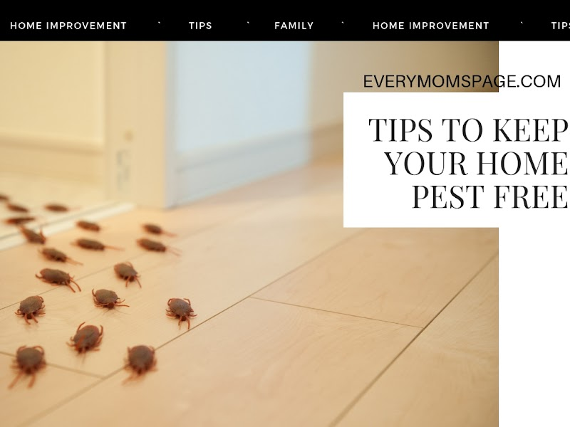 Tips to keep Your Home Pest-free