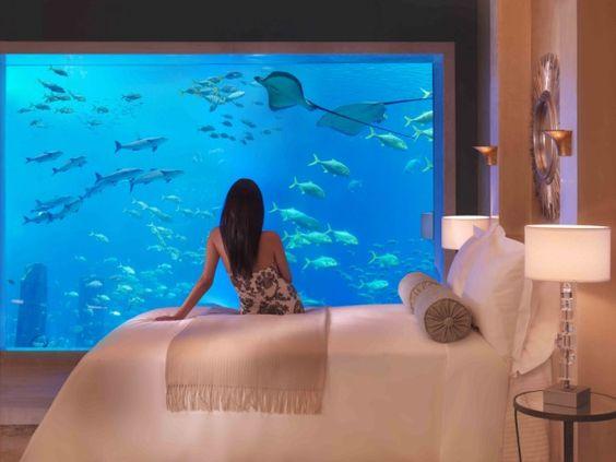 Bể cá cảnh trong phòng ngủ này có lẽ rất nhiều người mơ ước