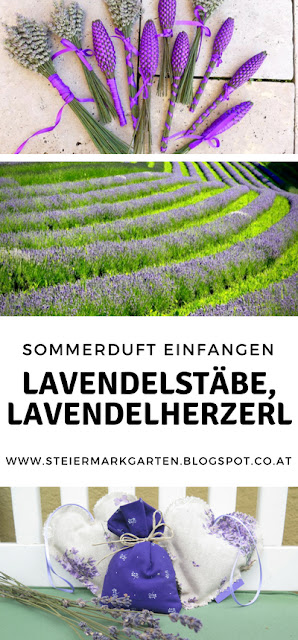 Lavendel-DIY-Pin-Steiermarkgarten