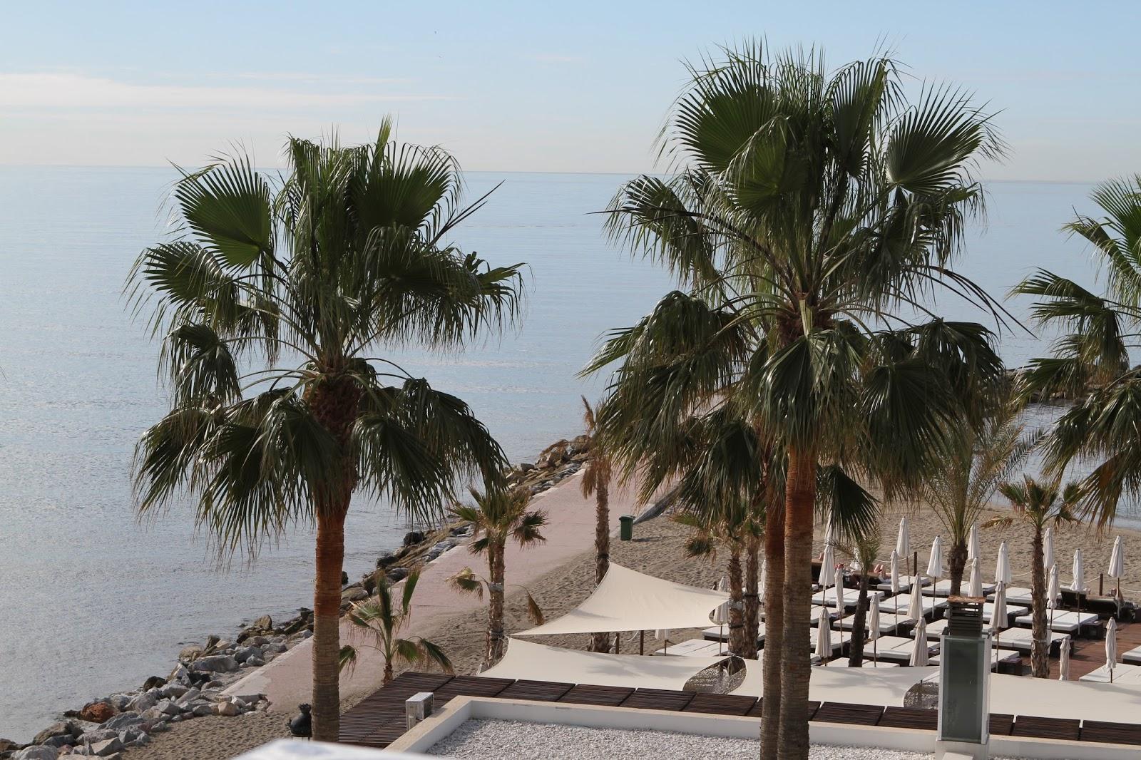 Amare Marbella
